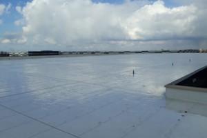 5.800 zonnepanelen op dak nieuw pand Eosta op LogistiekPark A12